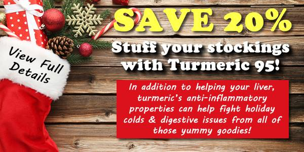 Product of the Month - Turmeric 95