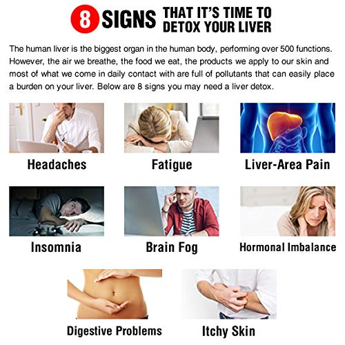 Clinical LiverSupport - 8 signs that it's time to detox your liver